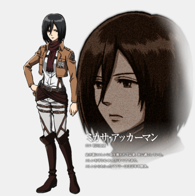 Mikasa has become a fan favorite