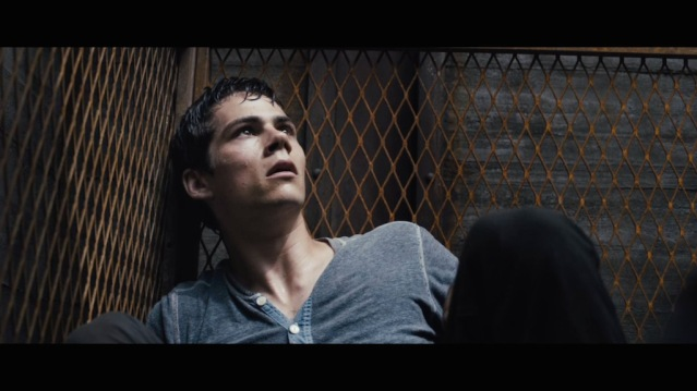 Thomas (Dylan O'Brien)