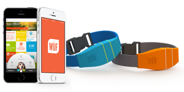 WUF Smart Collar and Mobile App (1)