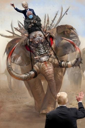 unfazed-bernie-meme-trump-biden-elephant